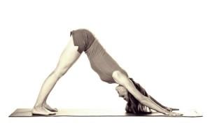 yoga_cane_che_si_stira